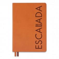 Ежедневник датированный светло-коричневый арт.47540/15 БУЙВОЛ (А5, 146х211 мм, 352 стр.)