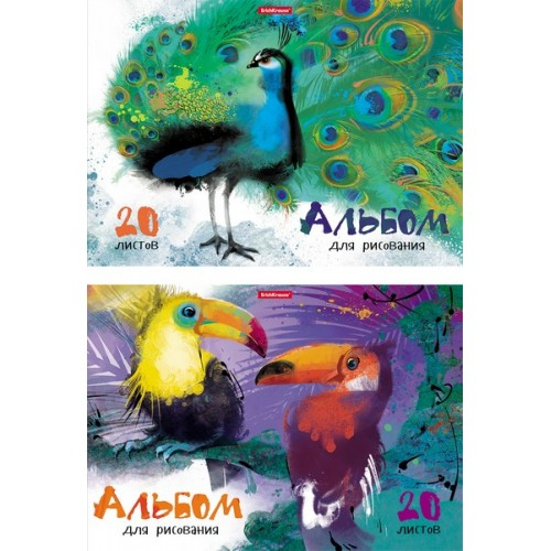 """Альбом для рисования А4 20л. """"Птицы жарких стран"""", клеевое скрепление арт.43261"""